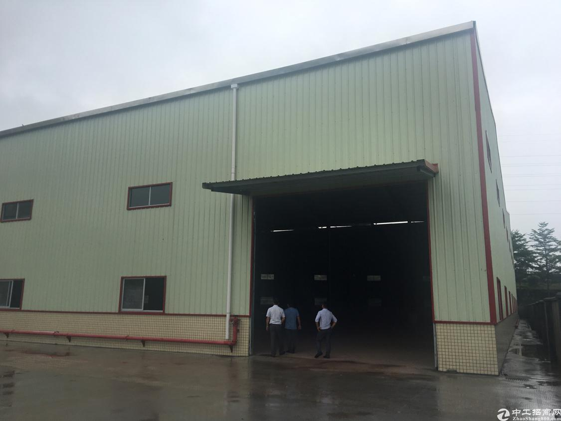 黄江镇星光村独门独院全新单一层钢构厂房出租
