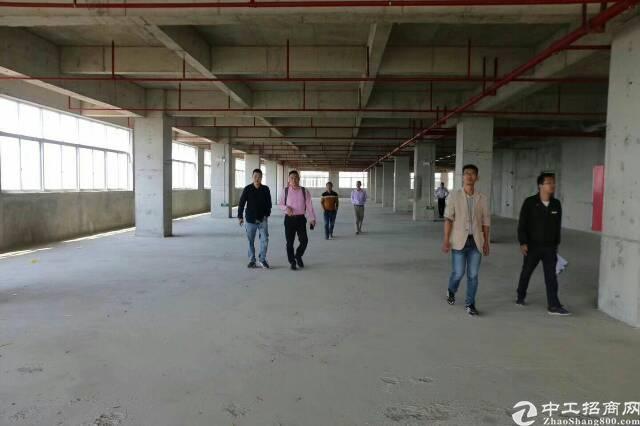 东莞常平高新产业新城红本产权厂房大小可分优售-图2