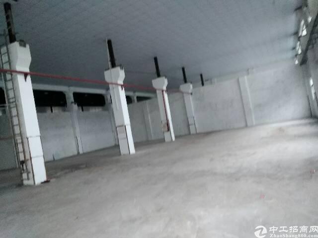 东莞长安可分租滴水十米高厂房