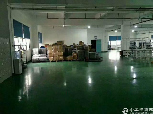 出租 公明楼村精装修厂房整层1400平米-图6