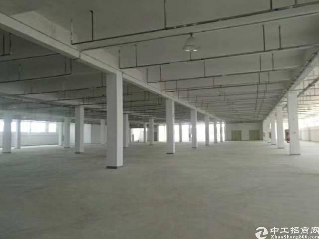公明新出厂房25000平独门独院出租