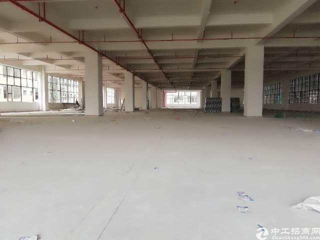 黄江镇靠近深圳公明新出独门独院标准厂房18000平方出租