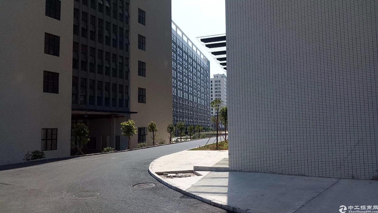 龙岗坪地,全新厂房150000,大小可分租,有红本