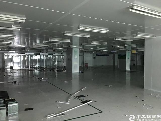 黄江镇花园式独院厂房10000平方空出