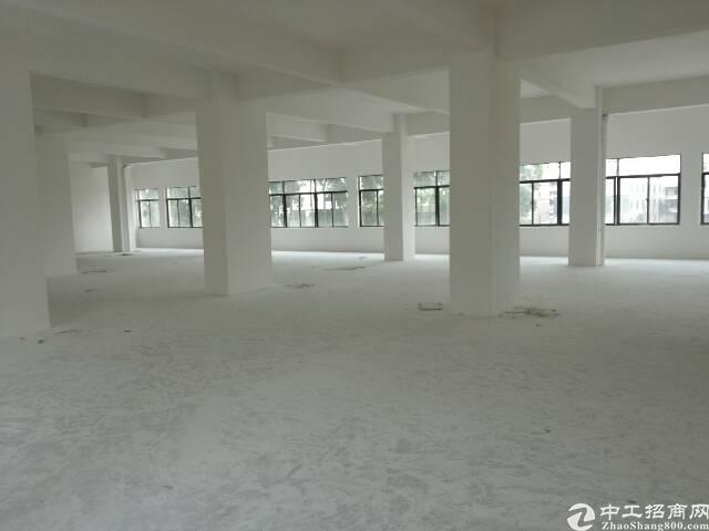 大塘朗800平方一楼厂房有宿舍