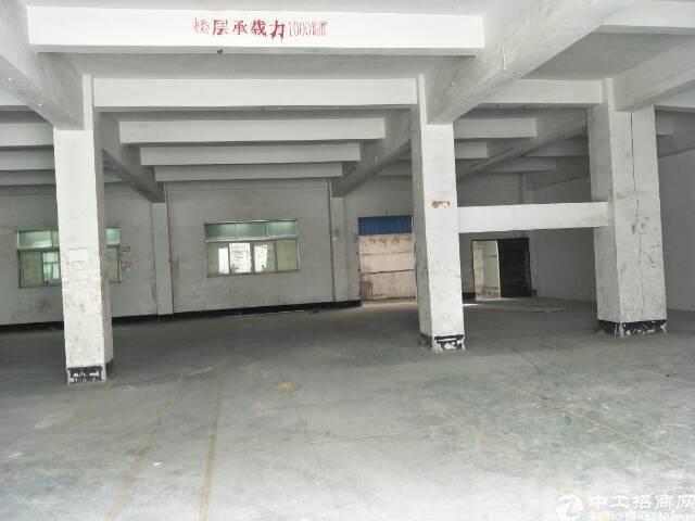 东莞靠深圳新出独院厂房11000平大小可分租