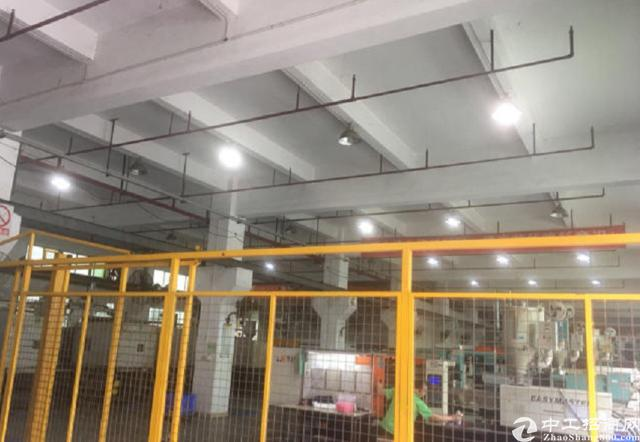 清溪浮岗标准一楼6米高塑胶模具厂1250平米