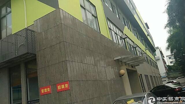 坂田208平写字楼出租