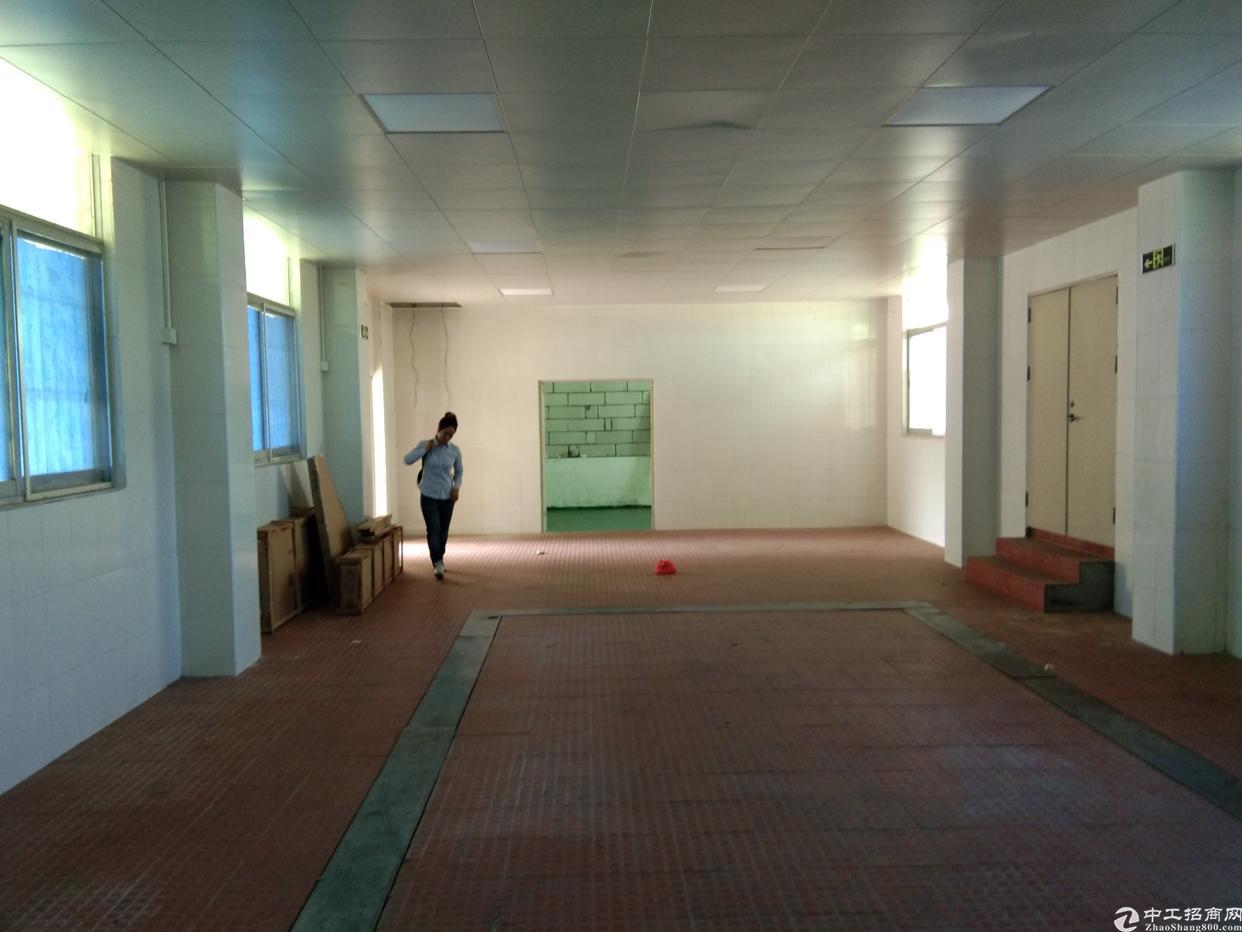 观澜大富路口旁边新出一楼300平带装修厂房