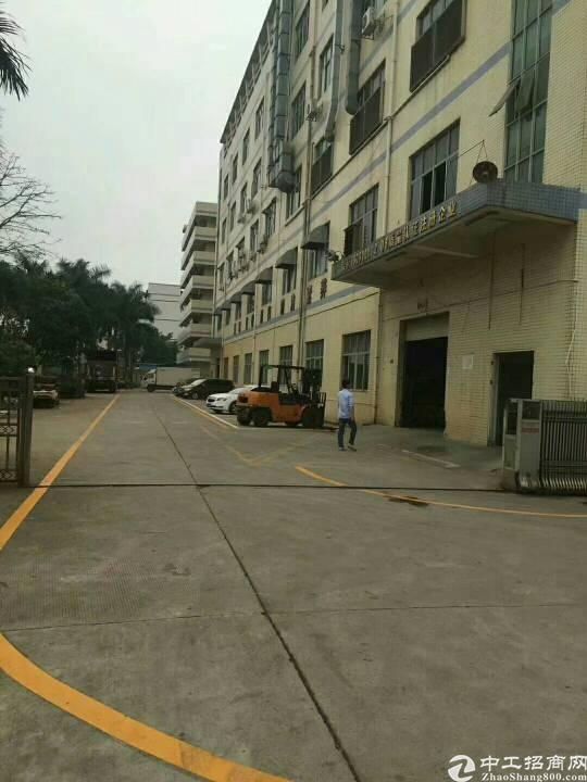 街口增田市场附近新出一楼1000平方可分租