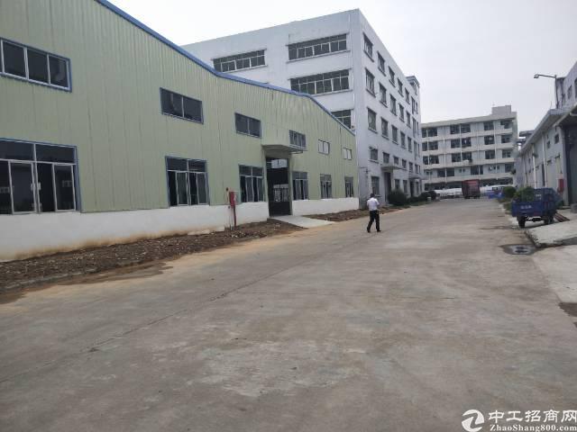 清溪新出单一层钢构厂房总面积6000平米