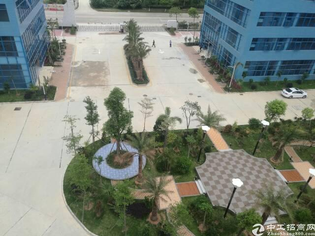 龙岗宝龙33900平原房东花园式红本独栋厂房出租