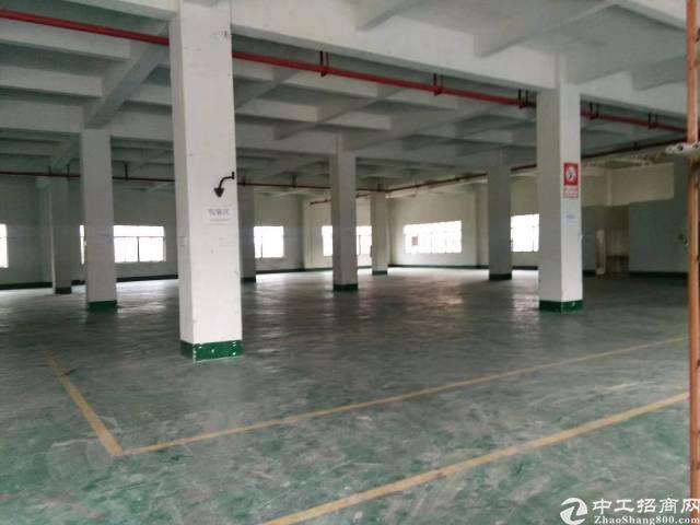 东莞大朗镇靠大岭山独院厂房招租5800平米