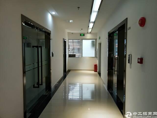龙华龙胜地铁口研发基地大小可划分-图5