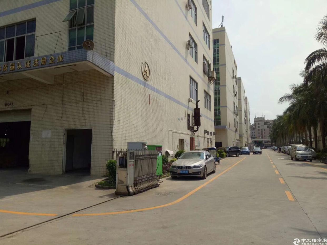 龙华清平高速口原房东整栋6000平,可分租-图3