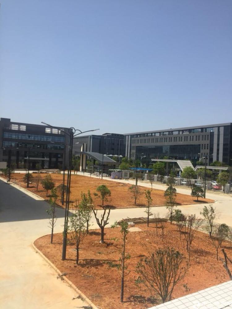 高新产业园分租2-3楼12000平方(最少分租3000平方