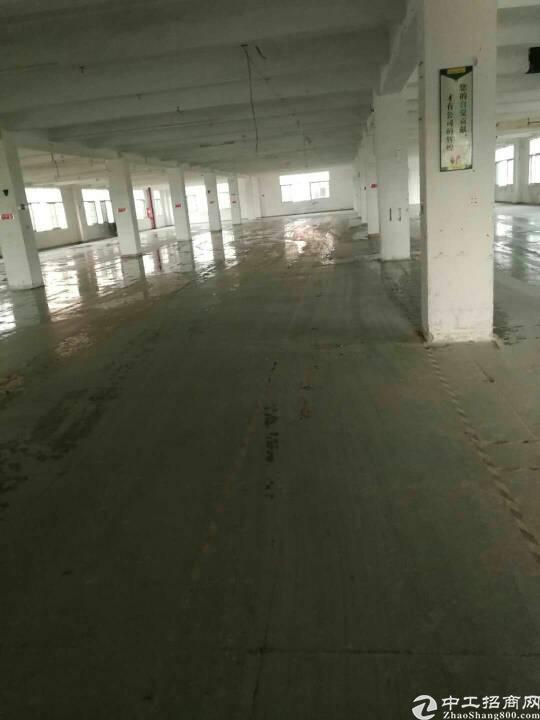 福永和平新出楼上2500厂房平大小可分租