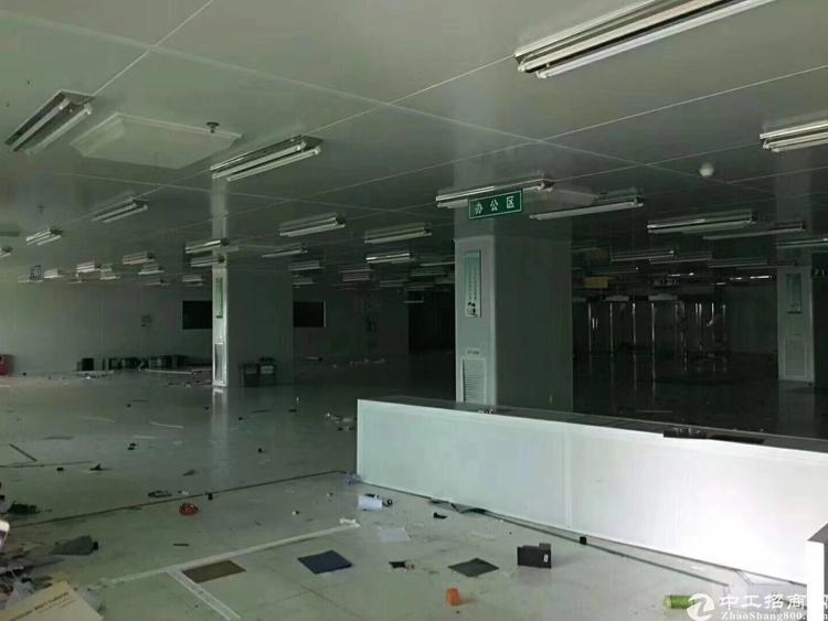 大岭山新出楼上3000平方带办公室装修