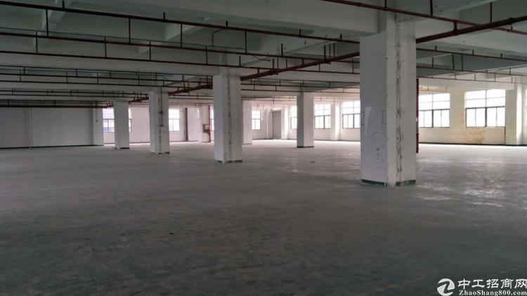 光明南光高速出口3楼2800平方厂房出租