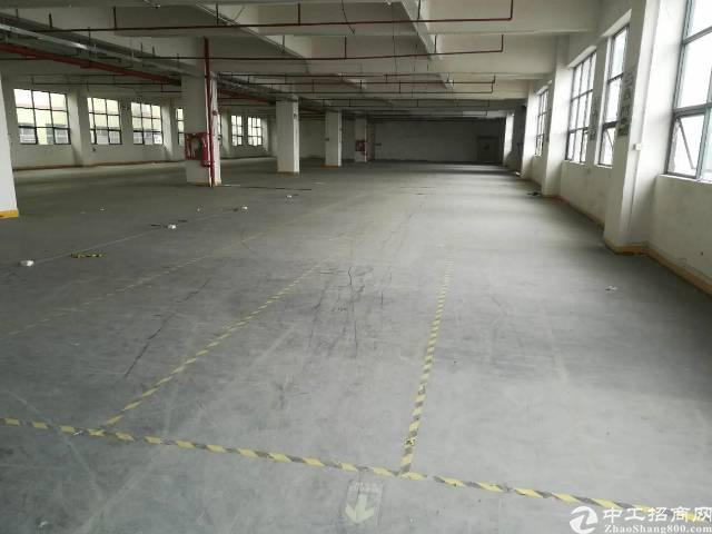 公明新出楼2000平带装修厂房出租