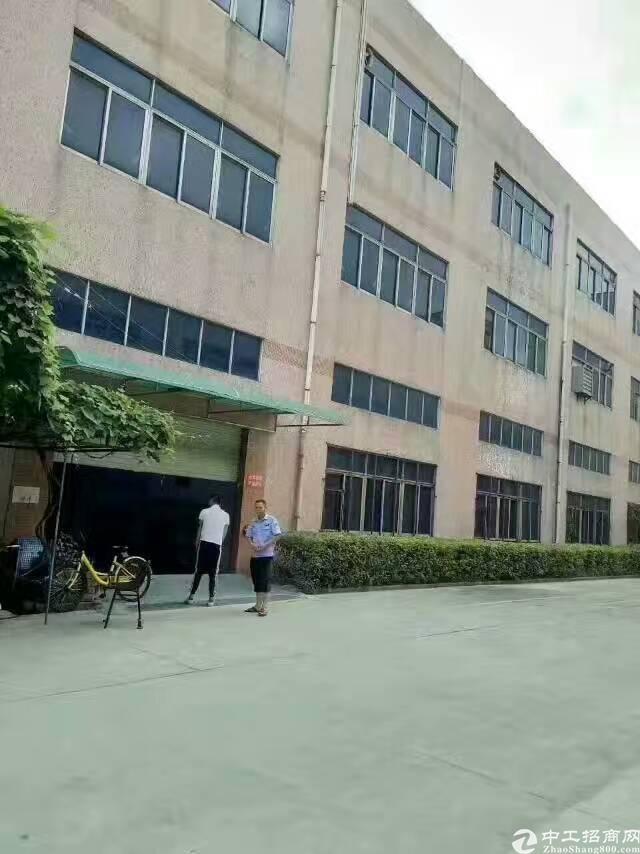 沙井黄埔107国道边一楼900平方带装修