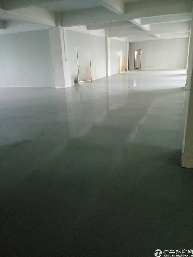 全新独栋带地坪漆厂房4层