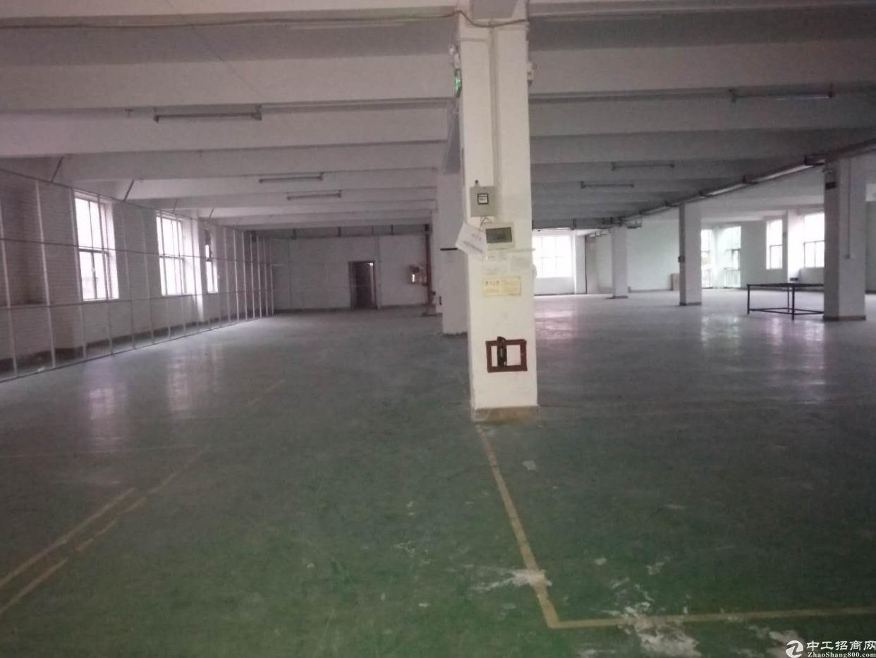 龙田大型工业区分租3楼1680平方出租