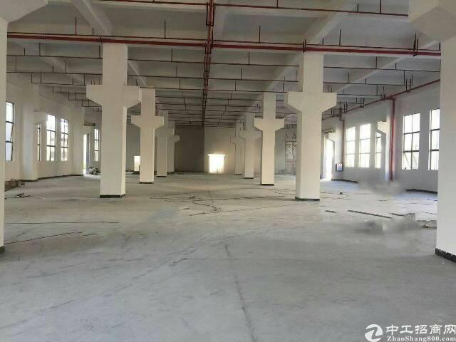 桥头新出全新独栋标准厂房隆重招租。