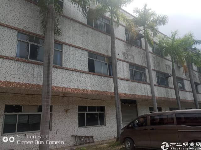 原房东独院厂房招租 标准厂房带地坪漆1-3层