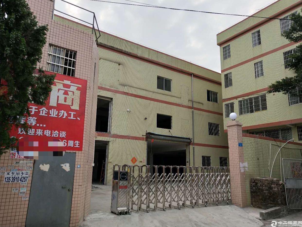 万江新空出独门独院标准厂房,可以分租,靠环城路