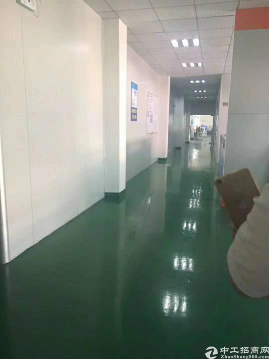 清溪三中一楼带装修2500平方厂房招租