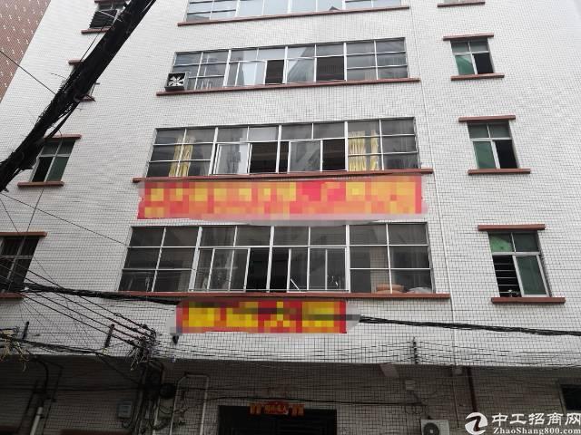 虎门镇口新出独栋厂房,非常适合制衣。
