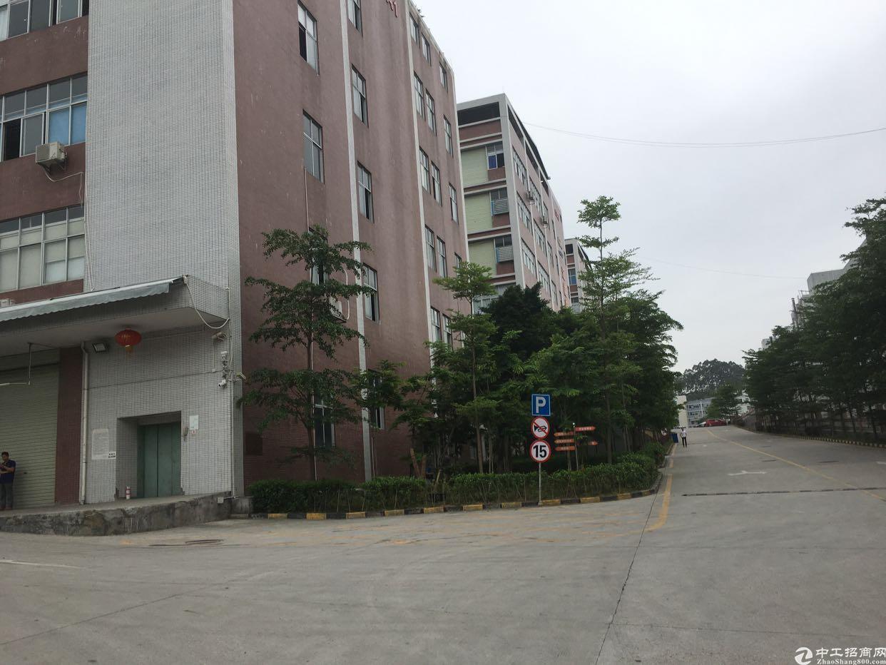 石岩石龙仔高速出口楼上9000平米红本厂房招租