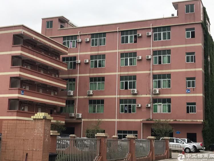 横岗沙荷路大康段新出楼上精装厂房800平米厂房招租 面积实在
