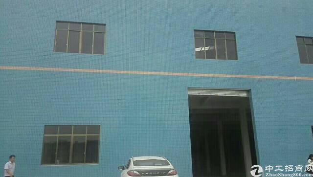 石新路旁全新厂房