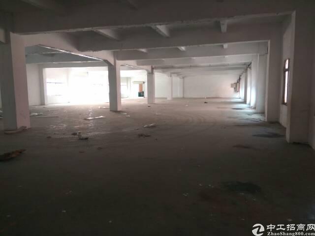 长安镇乌沙标准厂房1000平