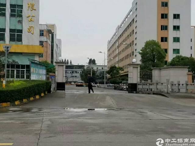 广州新塘荔新公路旁白石派出所附近花园式厂房5500平方
