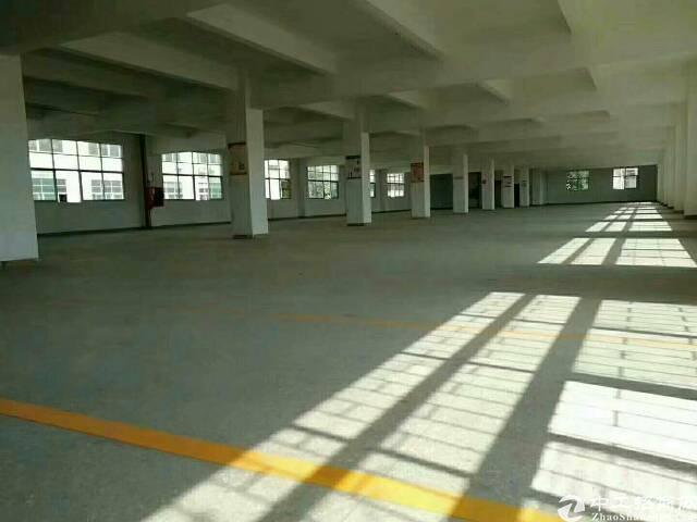 龙华新区观澜原房东标准厂房楼上一整层1200平出租