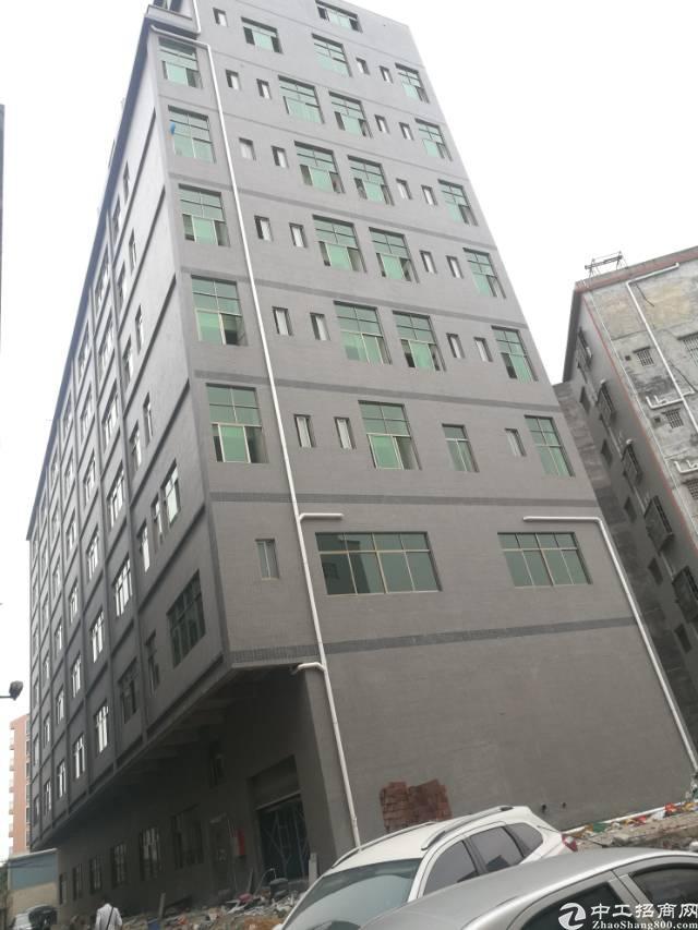 大岭山原房东全新标准厂房招租,有消防喷淋,楼上称重1.2吨