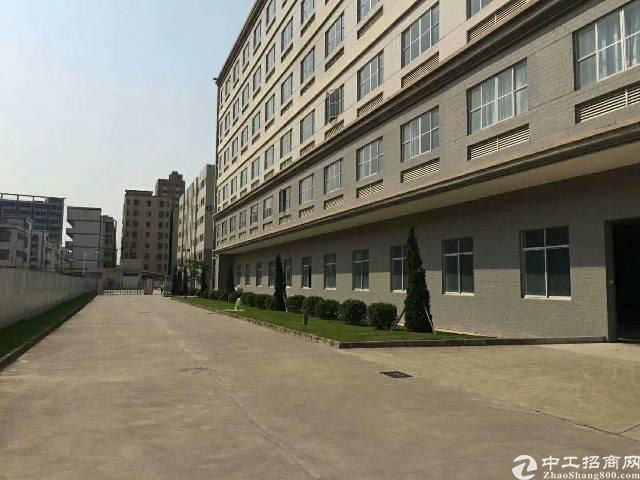 松岗大田洋新出楼上1600平米精装修厂房