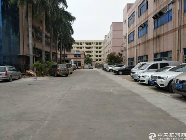 沙井黄埔大型工业园内新出装修厂房出租1100平