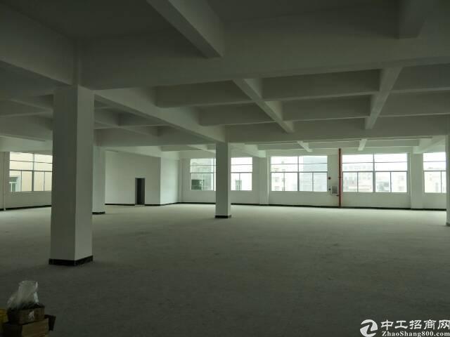 标准厂房一楼880平方出租