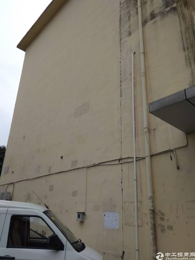龙华大浪布龙路旁边100-150平厂房改写字楼招租。地理位置