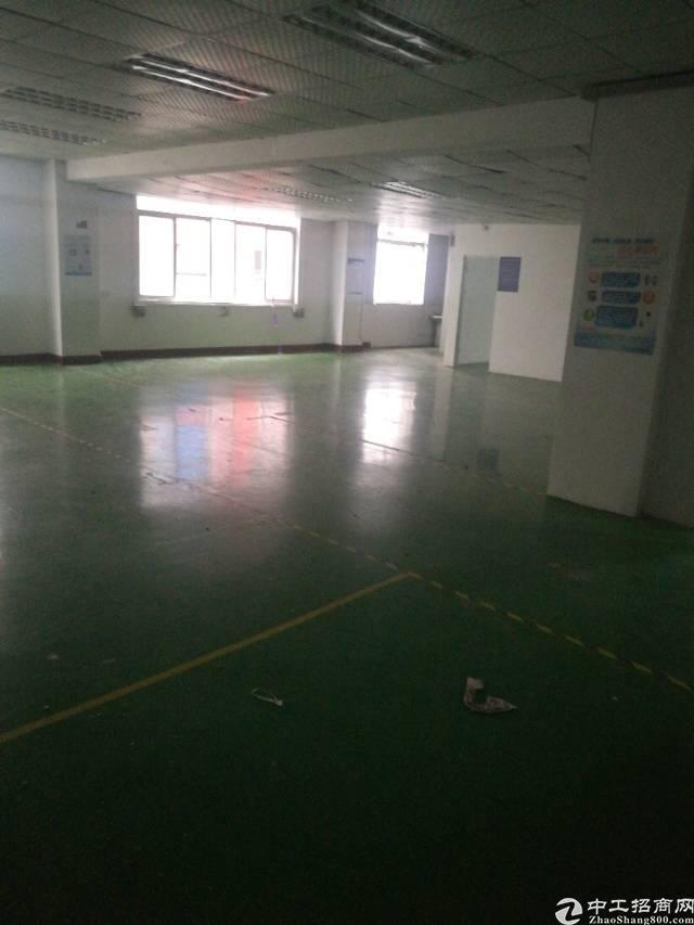 福永白石夏,107旁边,新出500平米,豪华装修,带两顿电梯