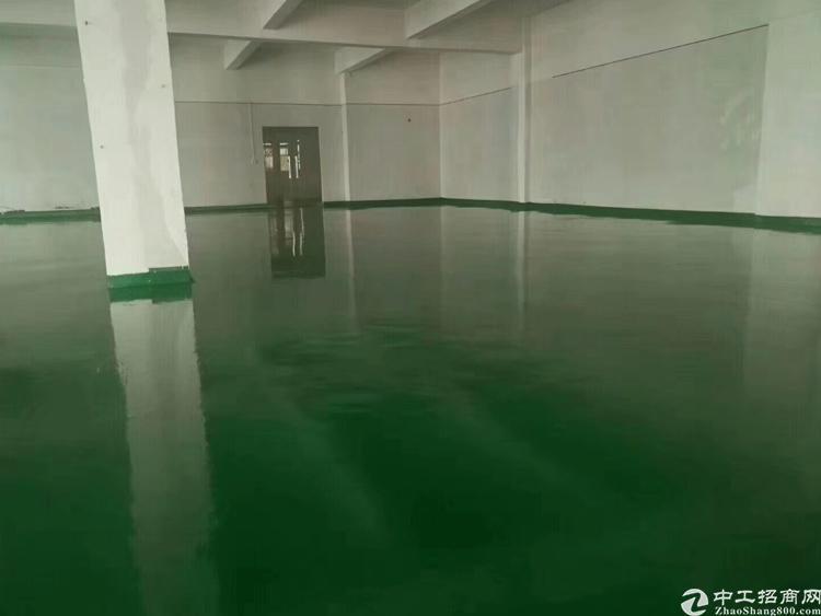观澜福明精装修700平厂房加办公