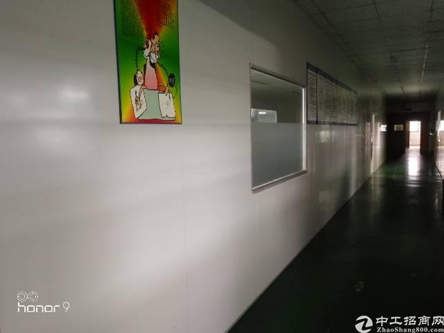 福永凤凰兴业三路楼上500平带装修