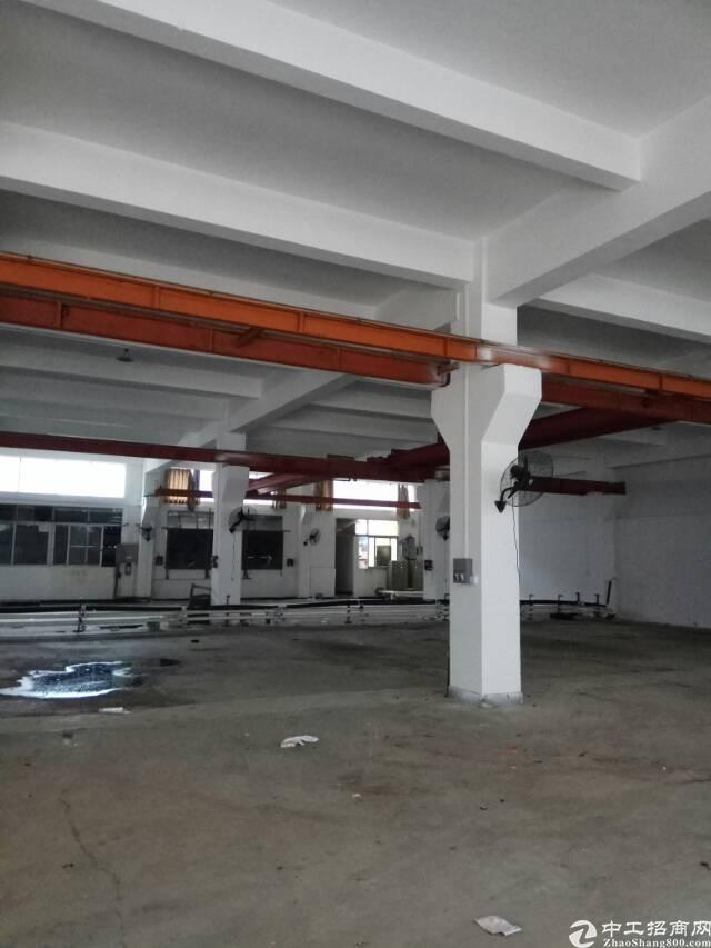 桥头镇新出标准三层独院厂房 6600,带行车
