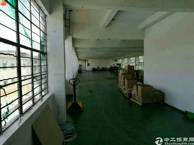 观兰桂花厂房招租