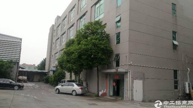 松岗塘下涌新出楼上整层1680平方带装修厂房低价出租