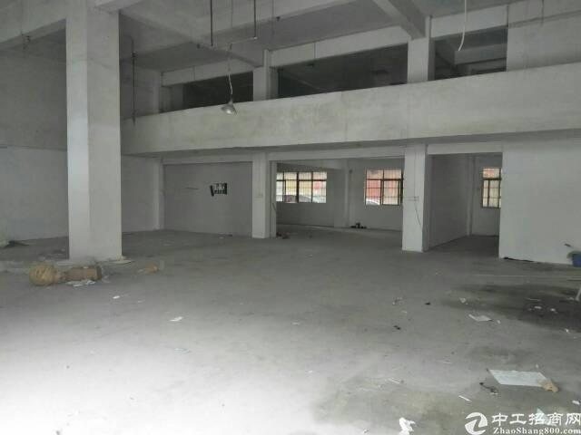 新出一楼厂房